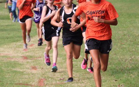 Cross Country Brings Plaque Home