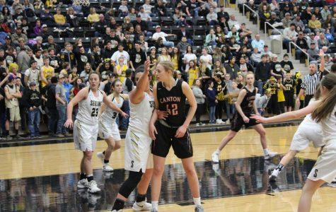 Lady Tigers Advance to Regionals