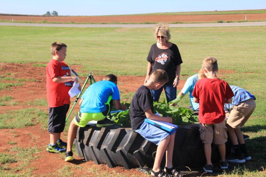 Gardening Third Graders