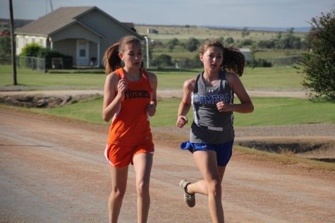 Lady Tigers Run Well At Lomega