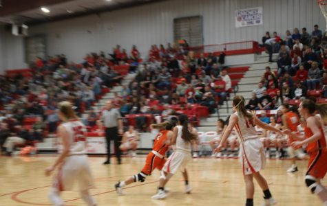 The Lady Tigers Win Against The Lady Red Devils