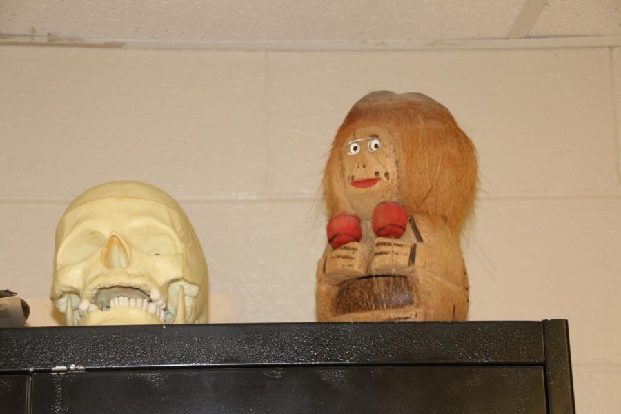 Top 8 Weird Objects Teachers Have In Their Rooms