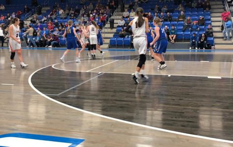 Lady Tigers Fall Short Against Lady Chiefs
