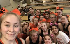 2019 Cheer Try-Outs are in the Books