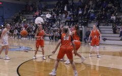 Lady Tigers Lose to Lady Whippets