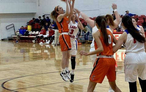 Lady Tigers Bring Home Third