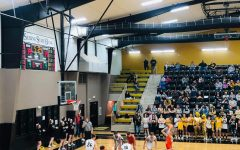 Tigers Place 2nd in District Tournament