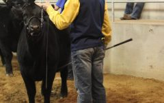 Canton Exhibits at Blaine County Livestock Show