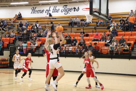 Preview of the Lady Tigers 2020