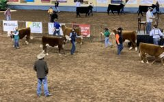The largest junior stockshow in Oklahoma requires showmen to weat masks. Audiences, however, were not required to.